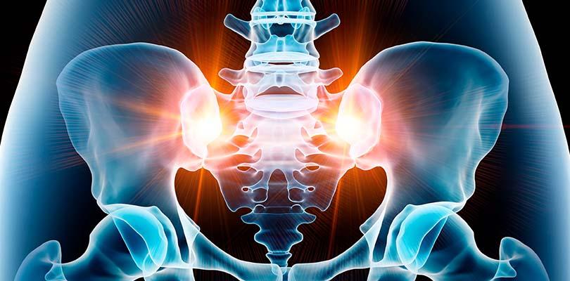 A graphic showing pelvic bones.